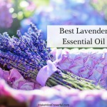 Top 10 Best Lavender Essential Oils In 2018