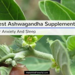 Best Ashwagandha For Anxiety, Stress and Sleep 2018