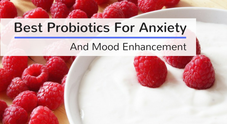 Best Probiotics For Anxiety And Mood Enhancement 2019