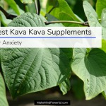 Best Kava Kava Supplements For Anxiety 2018