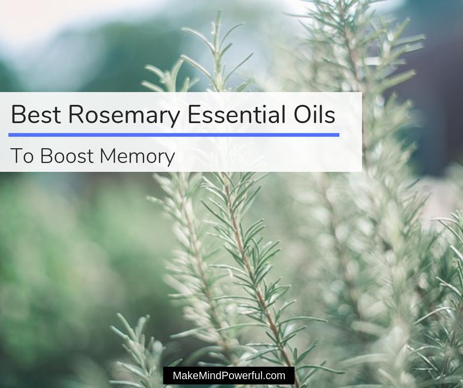Best Rosemary Essential Oils