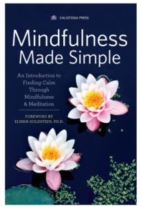 Best Meditation Books For Beginners